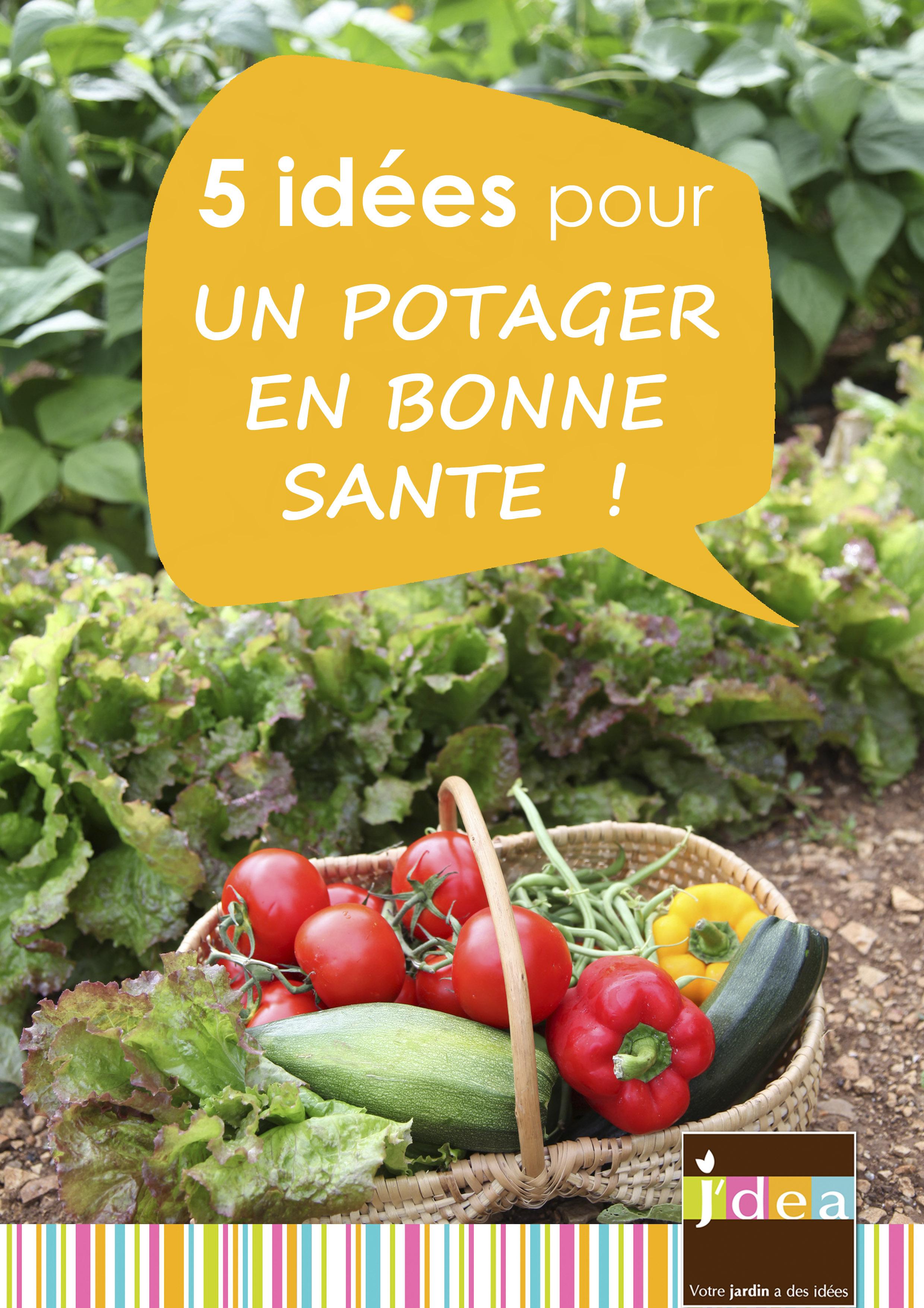 Découvrez nos 5 idées pour un potager en bonne santé, respectueux de la nature.